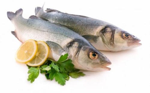 أكل السمك