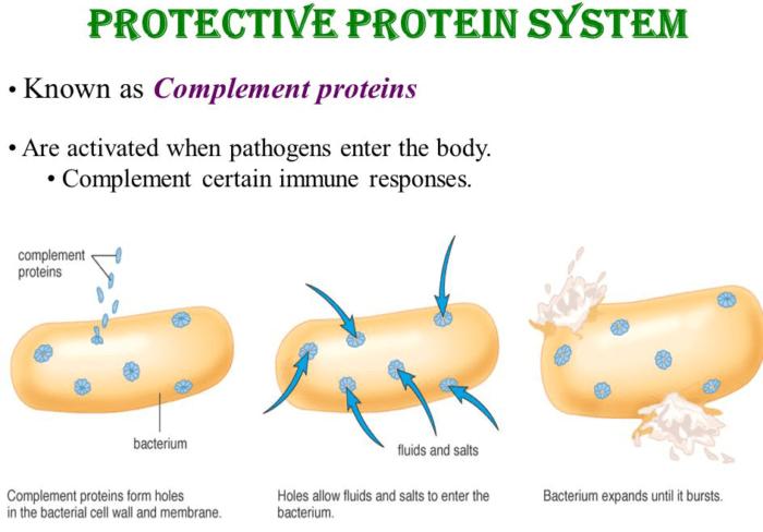 سوء تغذية البروتين