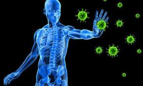 سوء تغذية البروتين وعلاقته بمناعة الإنسان والفرق بين الكواشيوركور والسغل
